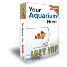 Your Aquarium Here