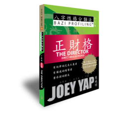The Ten Profiles - The Director (Direct Wealth Profile) Chinese