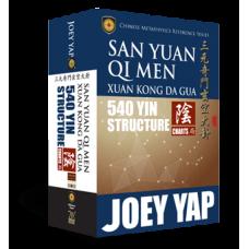 San Yuan Qi Men Xuan Kong Da Gua 540 Yin Structure