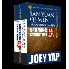 San Yuan Qi Men Xuan Kong Da Gua 540 Yang Structure