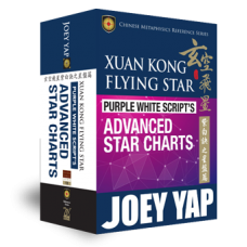 Xuan Kong Flying Star  Purple White Script's Advanced Star Charts (ebook)